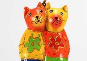 Colorfull Cat